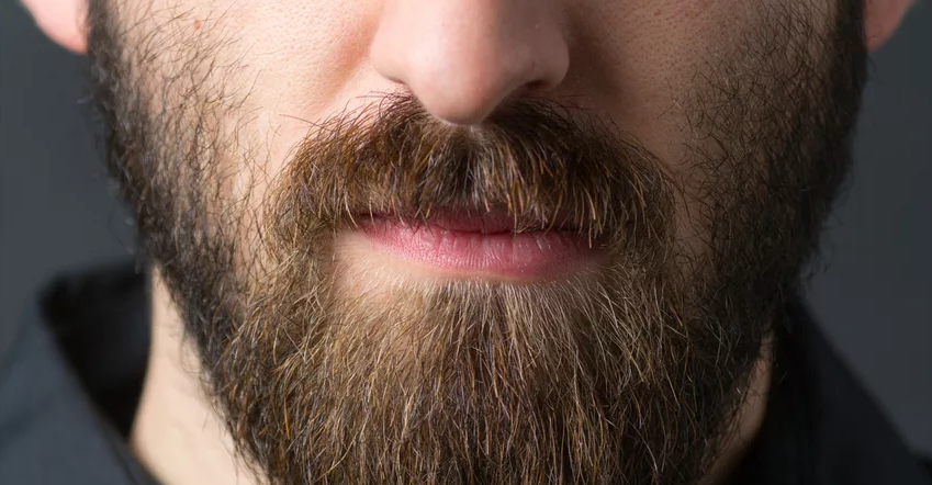 Is Growing A Beard Easy To Nourish Germ?